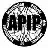 logo apip
